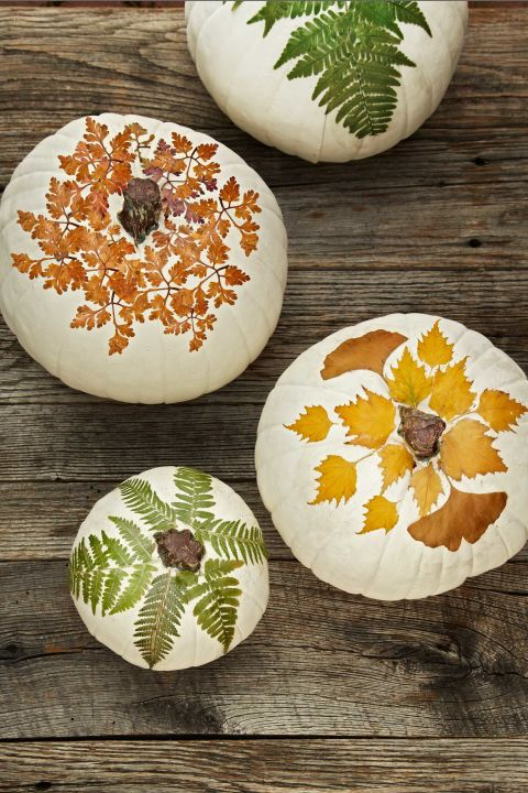 photo credit http://www.countryliving.com/home-design/decorating-ideas/advice/g1536/fall-decorating-ideas/?slide=24
