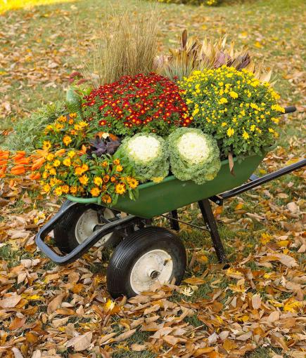 photo credit http://www.midwestliving.com/homes/seasonal-decorating/easy-fall-decorating-projects/?page=27